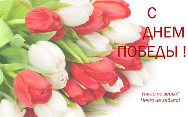 Поздравляем Вас и Ваших близких с великим праздником Днем Победы!